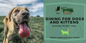 Dining for Dogs, Cats and Kittens too! @ Teddy's Restaurant | Rome | New York | United States