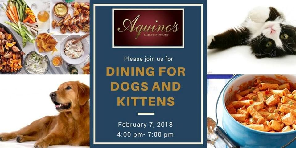 Dining for Dogs, Cats and Kittens too! @ Aquino's Restaurant | Rome | New York | United States