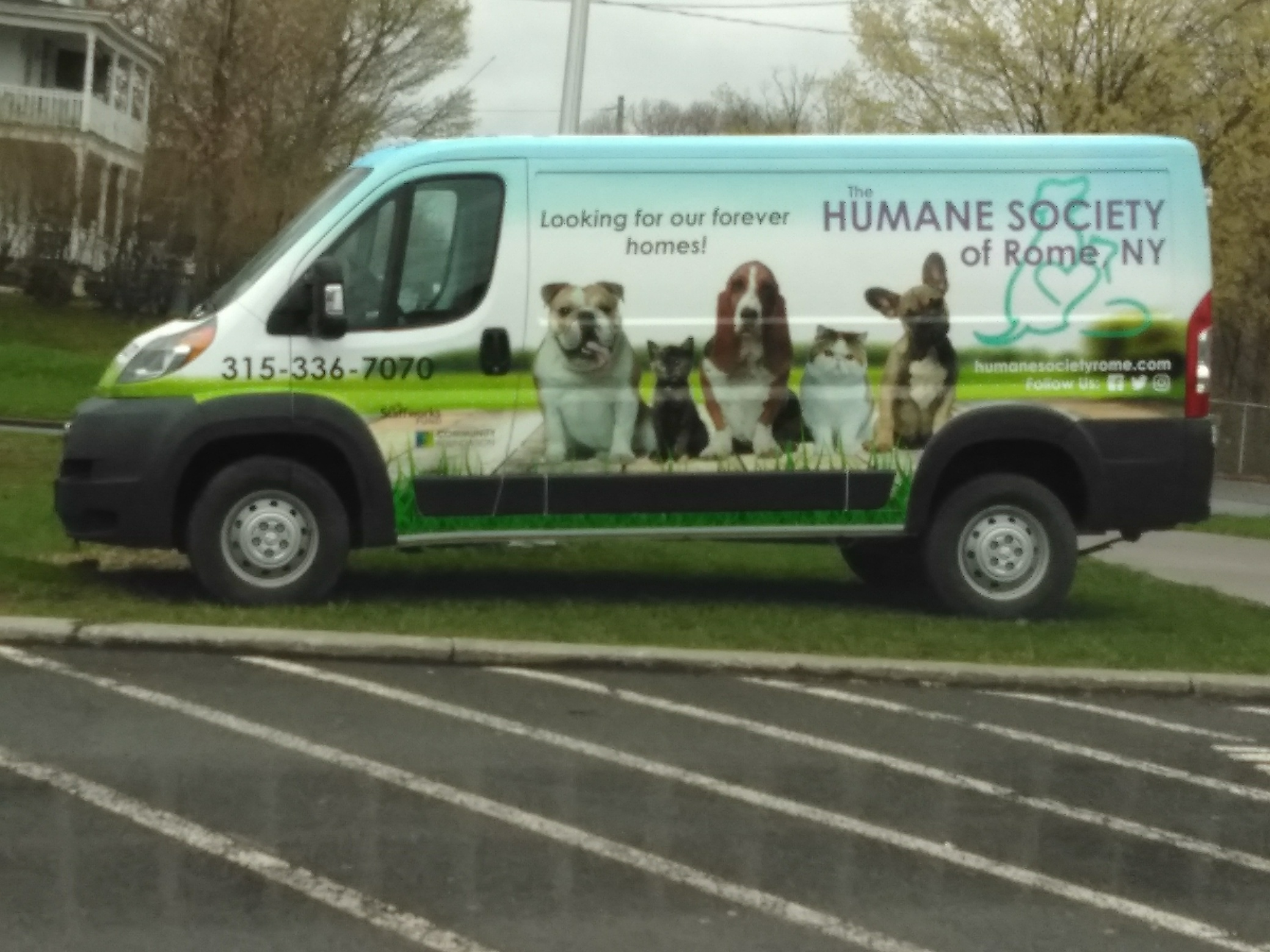 Humane Society of Rome – We Have a Heart!
