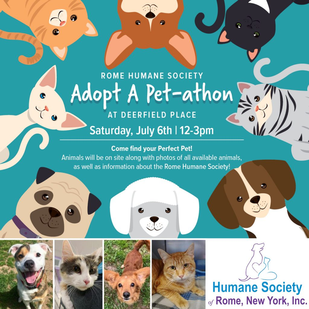 Deerfield Place Adopt A Pet-athon @ Deerfield Place